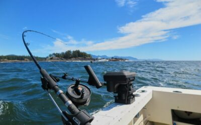 Avoiding Seasickness: Tips for Keeping Your Lunch Down in Kyuquot