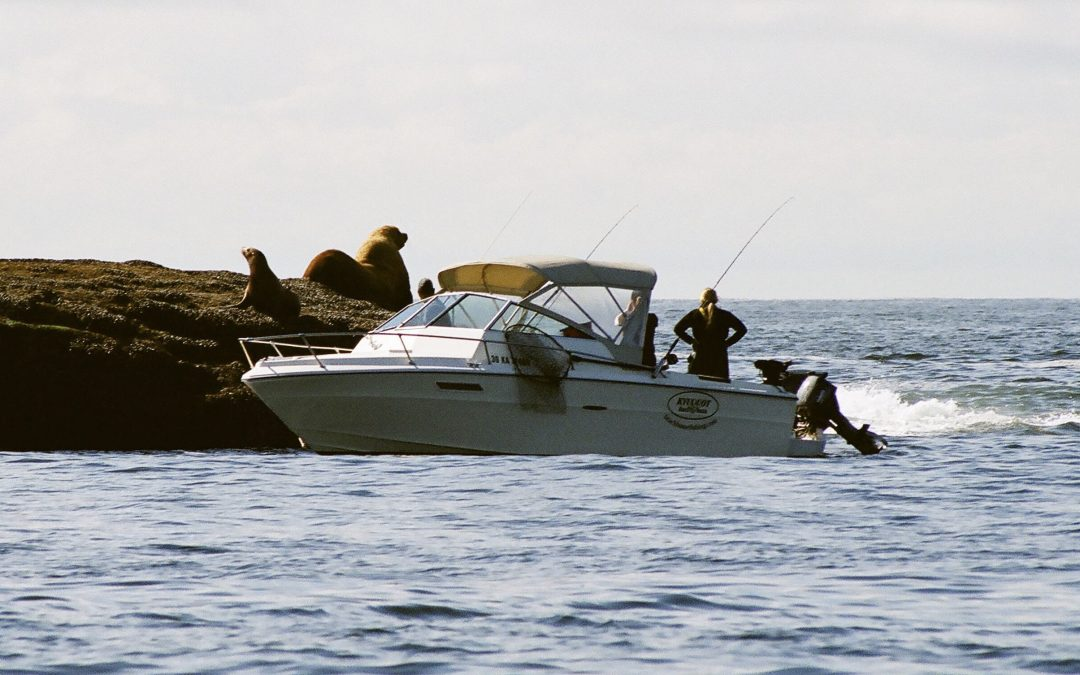 2020 Fishing Recap