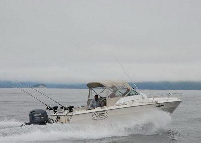 fishing-charters