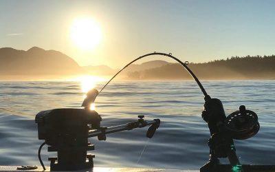 Fishing Regulations Update
