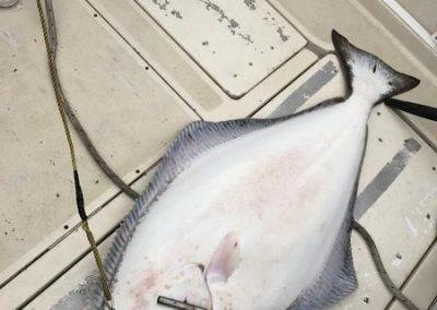 kyuquot-fishing-01